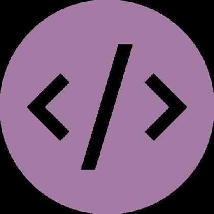 Custom-Coding-420x420[1]